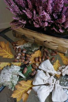 Na zdjęciu jesienne elementy wrzosy, żołędzie i liście